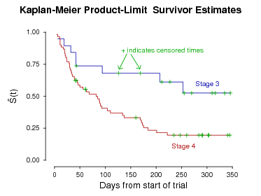 Kaplan-Meier survival analysis